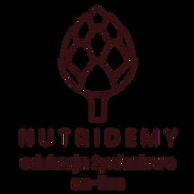 Nutridemy Logo tylko strona główna inter