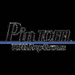 PIN TOEFL LOGO.png