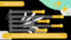PLAN COOINS-2 _Mesa de trabajo 1 copia 2