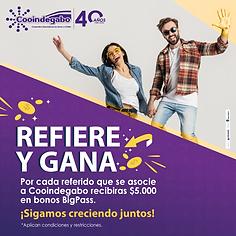 REFIERE Y GANA REDES_Mesa de trabajo 1.p