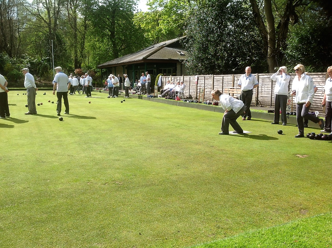 A Crowded Green