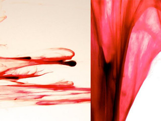 Artist Explores The Unexpected Beauty Of Menstrual Blood Using Macrophotography