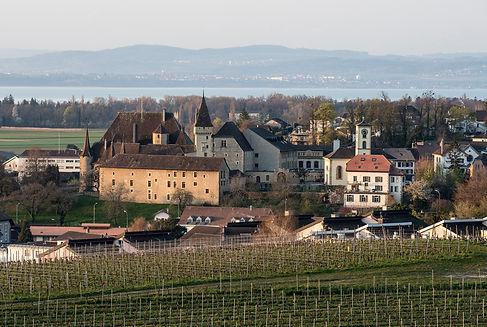 Chateau-de-Colombier_04-04-2020_002_mj.jpg