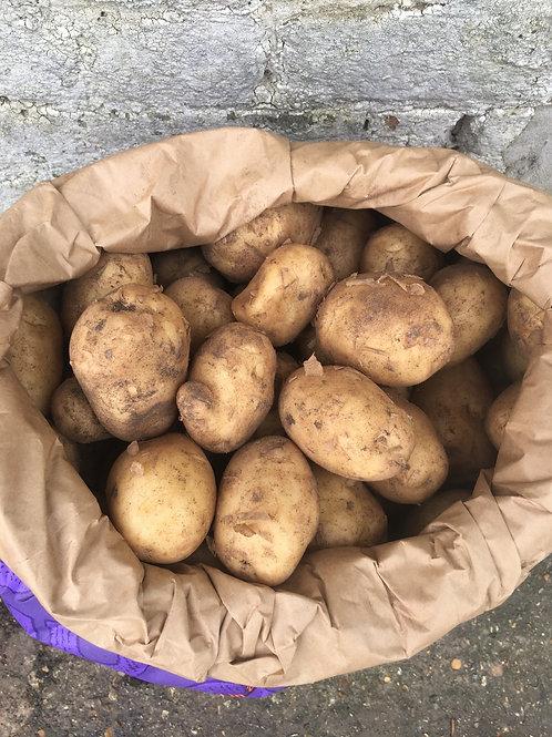 Maris Peer - New Season  Israel Potatoes Sack - 20Kg