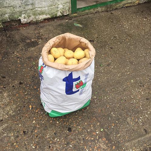 Maris Piper - Clean Potatoes Sack - 25Kg