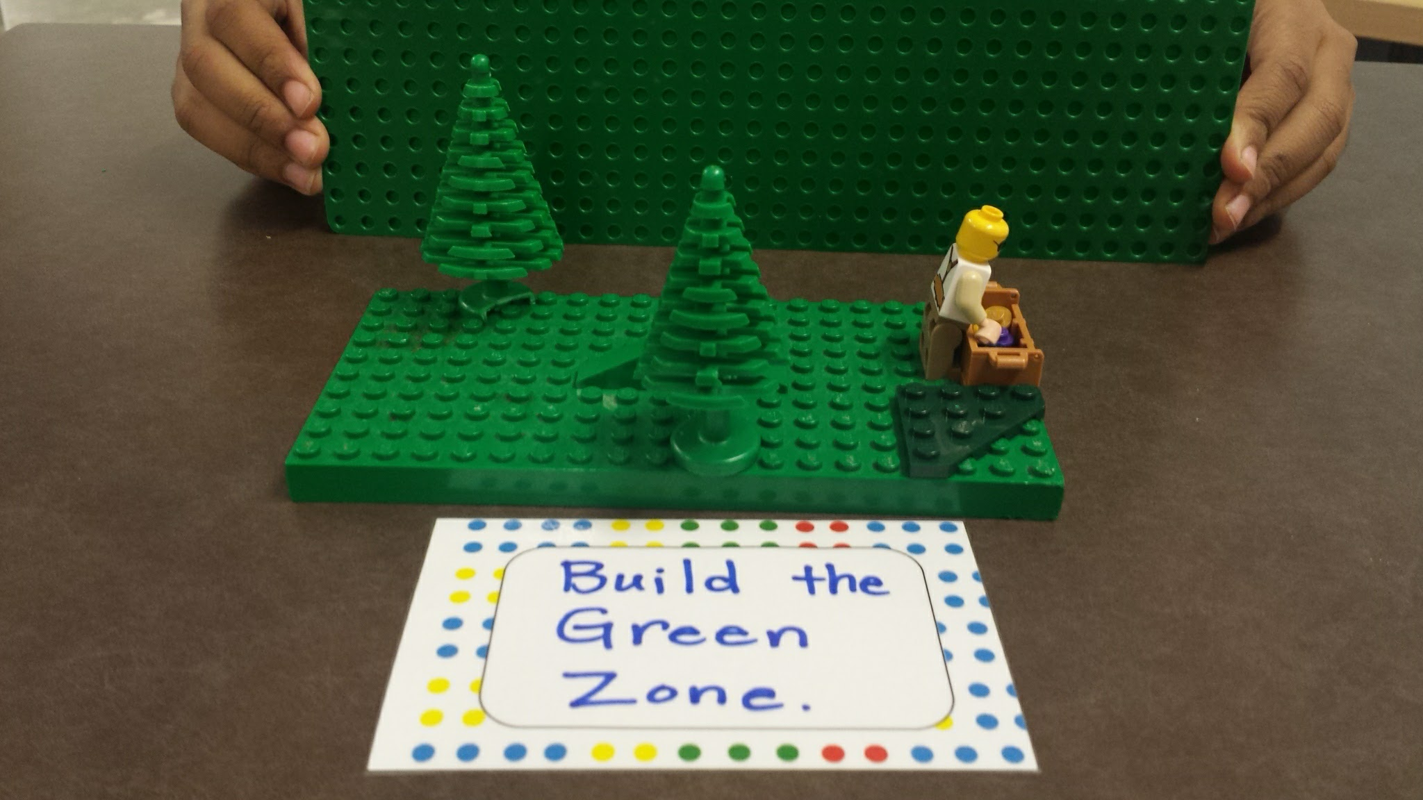 The Green Zone