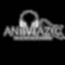 Location platine DJ ANIMAZIC