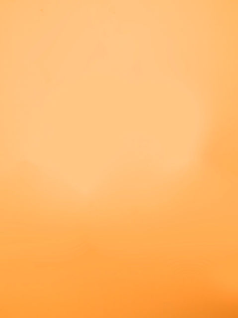 OrangeBackground_edited.jpg