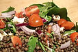 A Pulse Raiser's Wife Quick French Green Lentil Salad