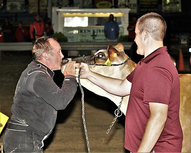 races cow kissing.jpg