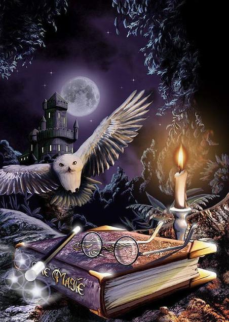 School of wizard