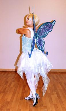 Winter Elsia Fairy