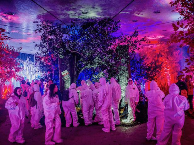 NETFLIX UPSIDE DOWN WORLD / RED FOREST