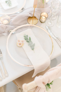 Charger Plate Blush Wedding