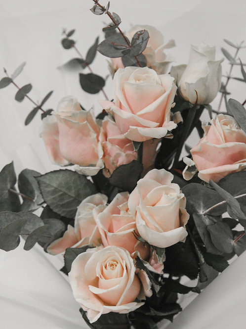 Pink Rose Bundle