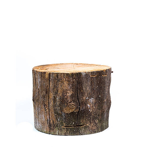 Wooden Log - Medium