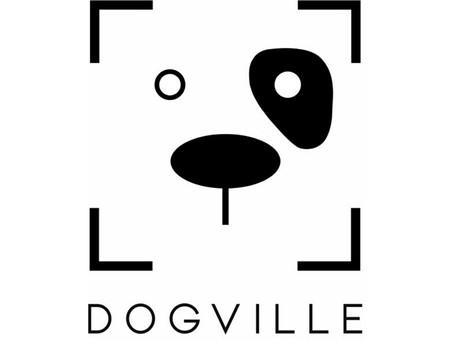 Local Business Spotlight: Dogville Playcare