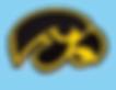 Iowa Hawkeyes.png
