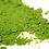 Thumbnail: אבקת תה ירוק מאצ'ה יפני