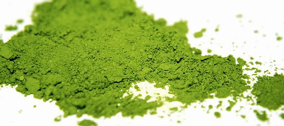 אבקת תה ירוק מאצ'ה יפני