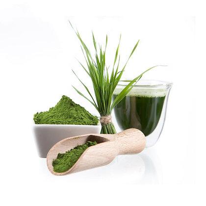 אבקת עשב שעורה אורגני - ברא צמחים