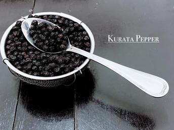 クラタペッパー:カンボジアの胡椒を世界へ~10月