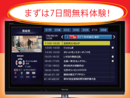 マイスリングテレビ~日本のテレビを見るなら!