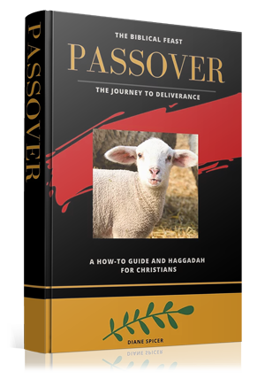 Passover-Book.png