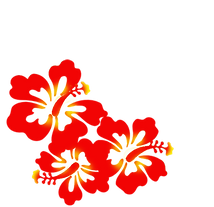 hibiscus layers rev.png