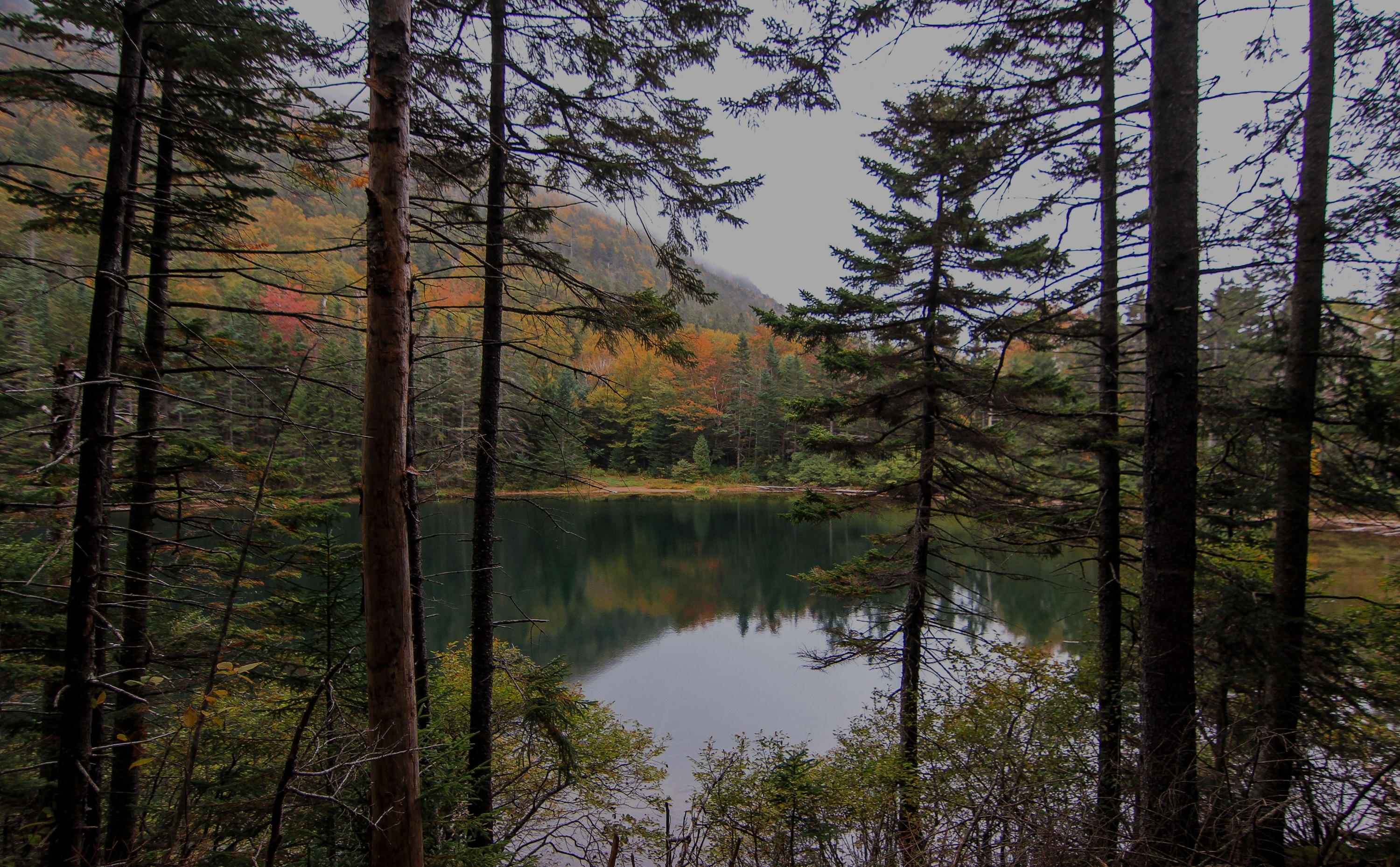 New Hampshire forest and lake