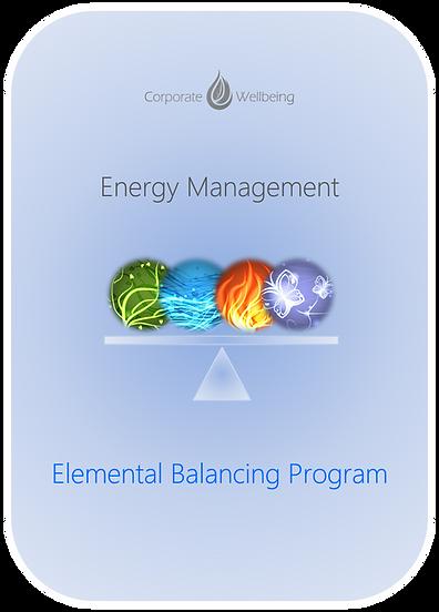 Energy Management EB Program Thumbnail rounded.png