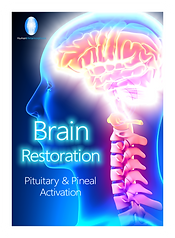 Brain Restoration 25% 24 glow.png