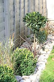 maintenance, seasonal jobs, pruning, tidy, short of time, affordable, gardener