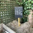 Composting_6