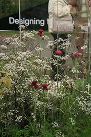Inspiration, design, planting plans, seasonal tasks diary