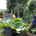 Jubilee_garden_5