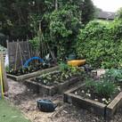 Jubilee_garden_4