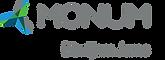 MONUM_logo_KRASAINS_sauklis.png