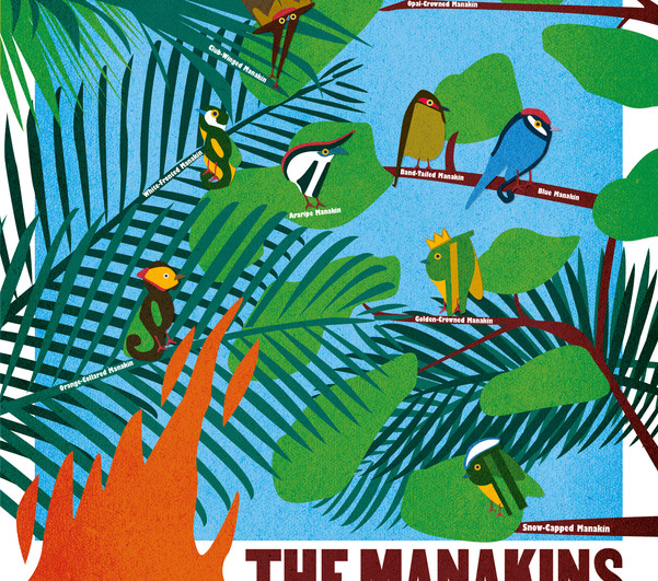 Manakins Poster