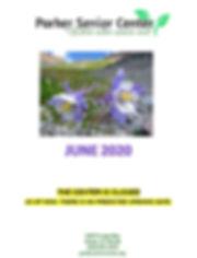 Newsletter - June 2020 .jpg