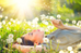 Four Tips for Coping with Spring Allergies