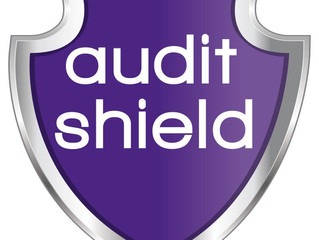 Our Audit Shield Service For Your Protection