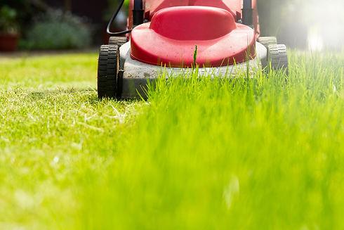entretien-pelouse-1.jpg