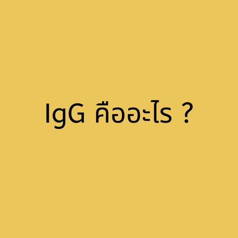 อยากรู้หรือเปล่า ? คำว่า IgG แท้จริงแล้วคืออะไร