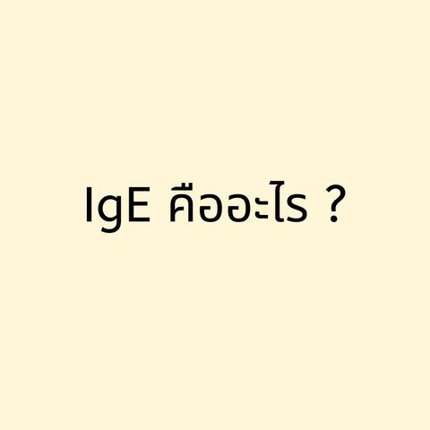คำว่า IgE คืออะไร?