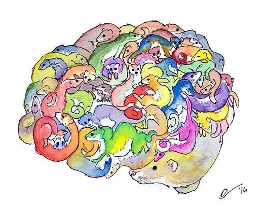 Brain Weasels