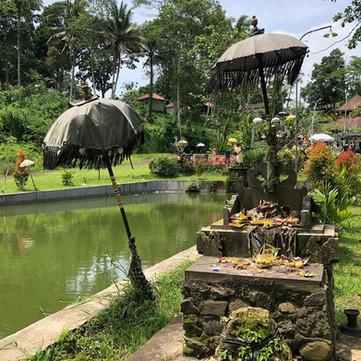 My initiatic journey Bali