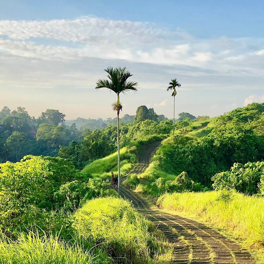 Bali Medicine Yoga & Healing retreat