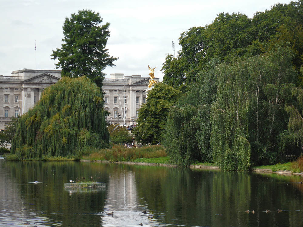 Buckingham Palace as seen from St. James Park