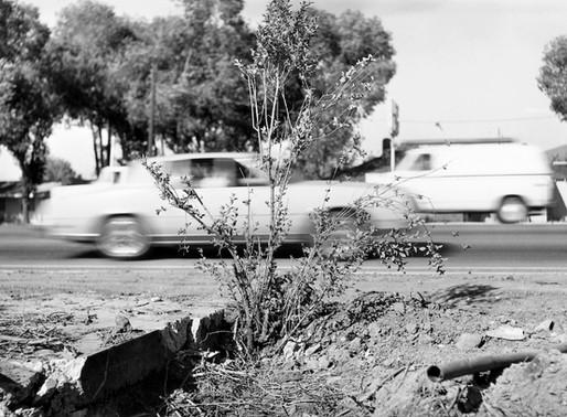 Lewis Baltz ::: Fundación MAPFRE ::: photographies